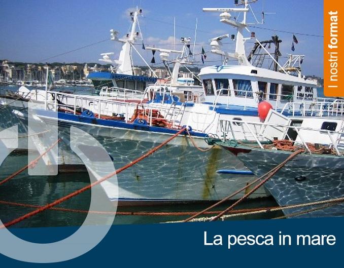 La pesca in mare